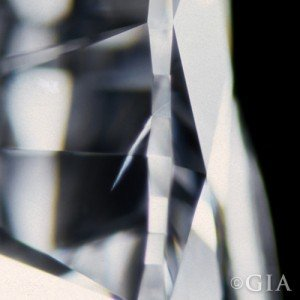 Feather inclusion in diamond