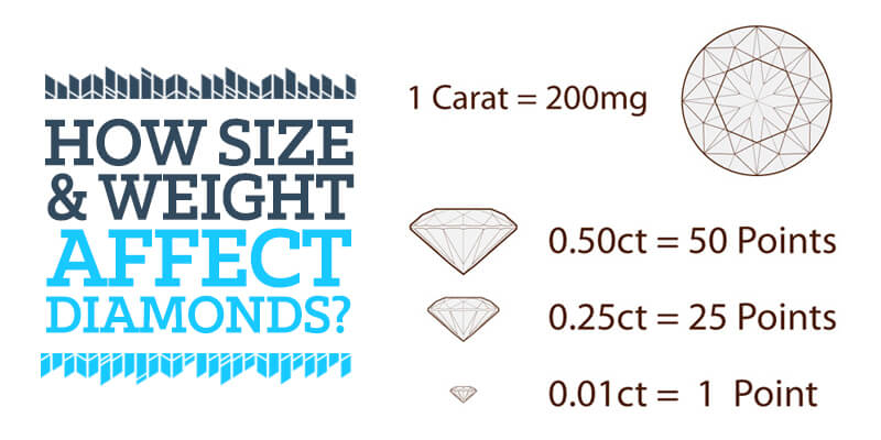 how size and weight