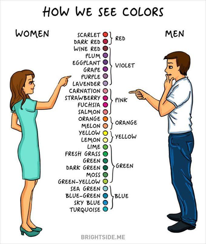 Women vs Men color perception